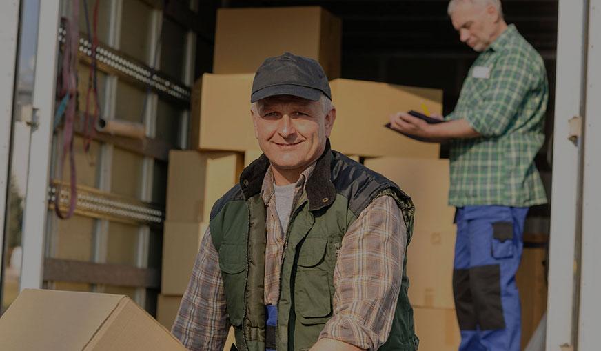 Safari Removals Man and Van Moving Solutions